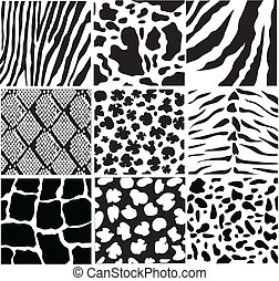 animal skin - vector black and white animal skin
