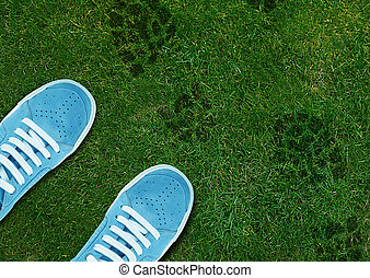 Blue Shoe print on green grassland.