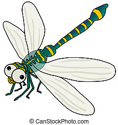Dragonfly - Insect icon : Dragonfly