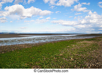 Ebb tide on a beach
