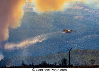 Fire in the forest - twin engined water bomber dropping...