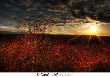 Elderberry Sunshine - Fall sunset in rural Alaska with...