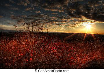 Elderberry Sunshine - Fall sunset in rural Alaska with...