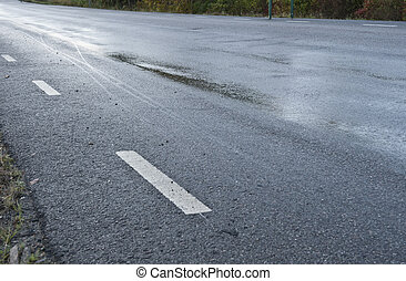 Treacherous icy road - Treacherous road due to rain or frost