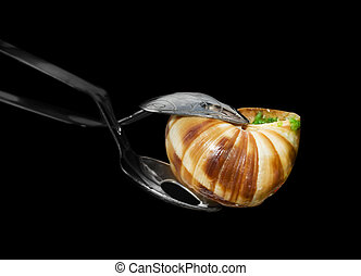 French pincers for escargot - Close up view of french...