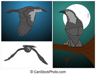 Classic Crow Vectors Set