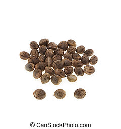 Hemp seeds isolated on white background