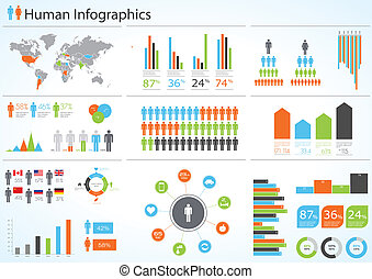 Human infographic vector illustration. World Map and...