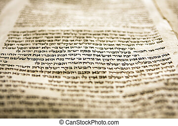 One Line Of Torah - A part of the Hebrew text fomr a portion...