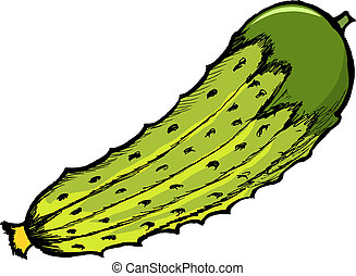 Cucumber - Illustration of a cucumber on white background