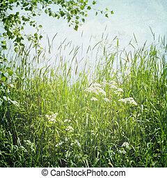 vintage summer landscape
