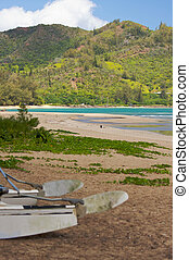Catamaran on the Beach - Tranquil Bay Scene in the Early...