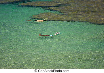 Snorkelers in the Bay - Snorkelers in the Clear Tropical...