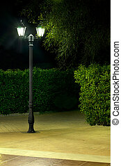 Night picture of the lamp in the park. Decorative garden in...