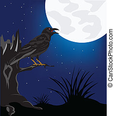 Black raven on tree in the night