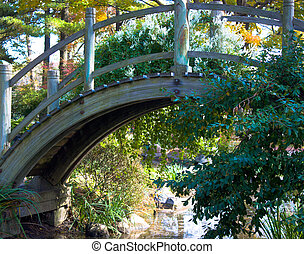 Wooden bridge with plants - Wooden bridge over a man-made...