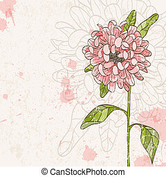 Hand drawn flower - Hand drawn chrysanthemum EPS 10 vector...