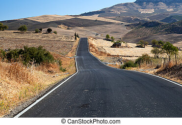 asfalt road in Andalucia - asfalt road in countryside...