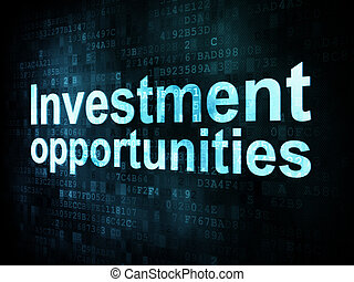 Business concept: pixelated words Investment opportunities...