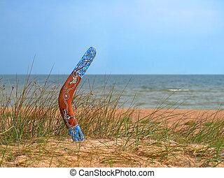 cor, boomerang, Overgrown, arenoso, praia