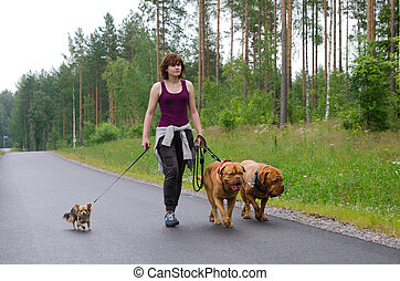 A girl and her dogs walking in a summer forest, Finland