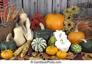 Autumn Harvest - a variety of squash and pumpkins