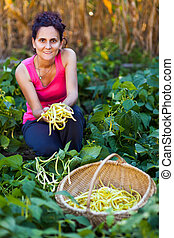 Young woman picking bean pods in the countryside