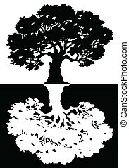 Two black and white trees. Vector illustration