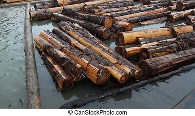 Fraser River Lumber - Bundles of lumber in the Fraser River...