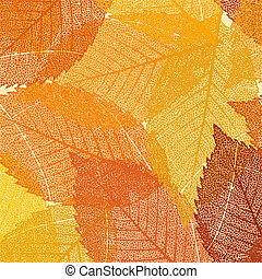 Dry autumn leaves template EPS 8 vector file included