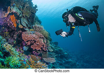 Diver on a healthy reef