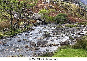 krajowy,  Snowdonia,  Park