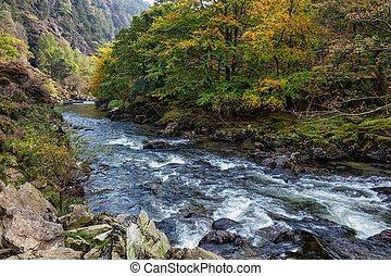 View along the Glaslyn River in autumn