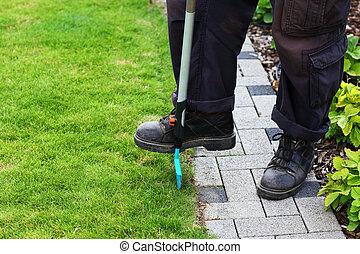 Garden care - edging lawn
