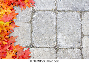 Oak Leaves Border Over Stone Bricks - Fall Oak Tree Leaves...