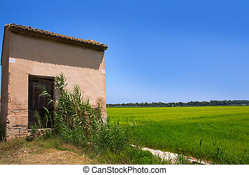 Rice fields in Valencia with warehouse