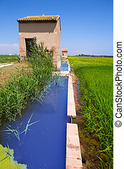Rice fields in Valencia with irrigation and warehouse
