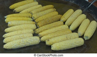 cooking fresh corn cobs