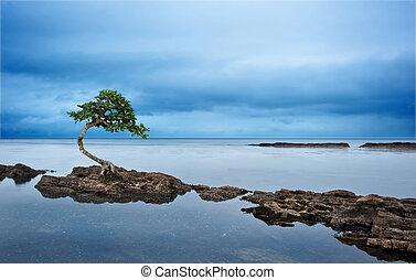 Moody dramatic seascape long exposure - Long exposure moody...