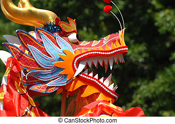 Chinese Dragon - A Chinese Dragon head