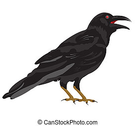 Black raven on white background is insulated