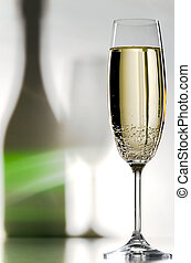 champagne glass - a filled champagne glass with shadows in...