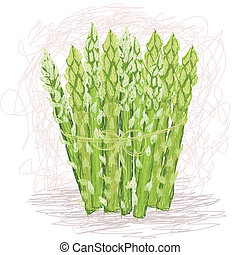 asparagus - closeup illustration of fresh bunch of asparagus...