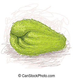 chayote - closeup illustration of a fresh chayote fruit.