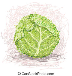 cabbage - closeup illustration of a fresh cabbage vegestable...