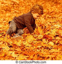 Little boy in autumn park