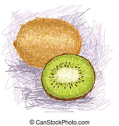 kiwi - closeup illustration of a fresh kiwi fruit.