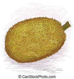 jackfruit - closeup illustration of a fresh ripe jackfruit