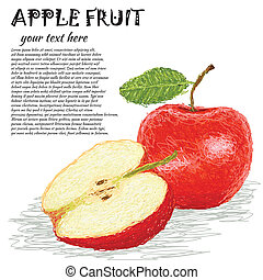 apple fruit - closeup illustration of fresh apple fruit with...