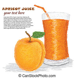 apricot juice - closeup illustration of fresh apricot fruit...